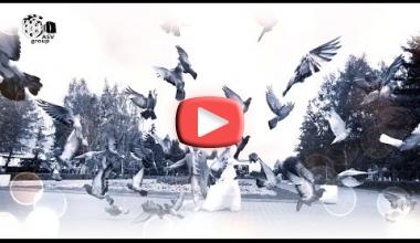 Романтический ролик из свадебных фотографий.